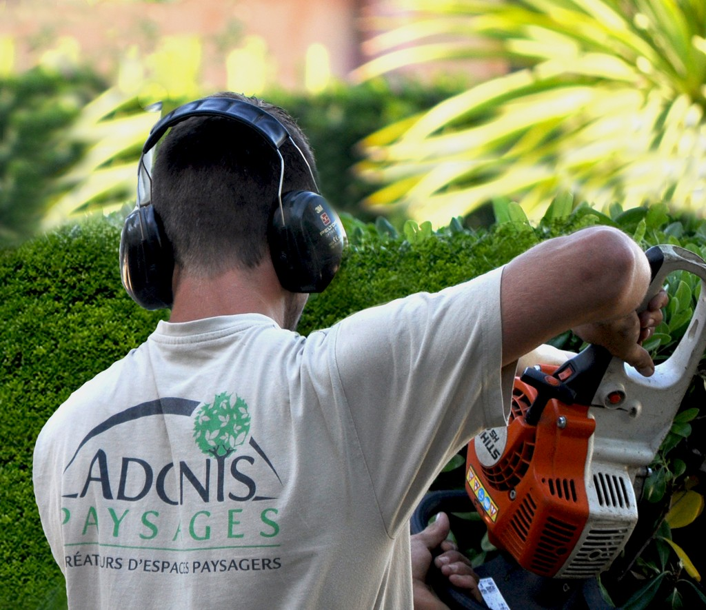 Recrutement Adonis Paysages