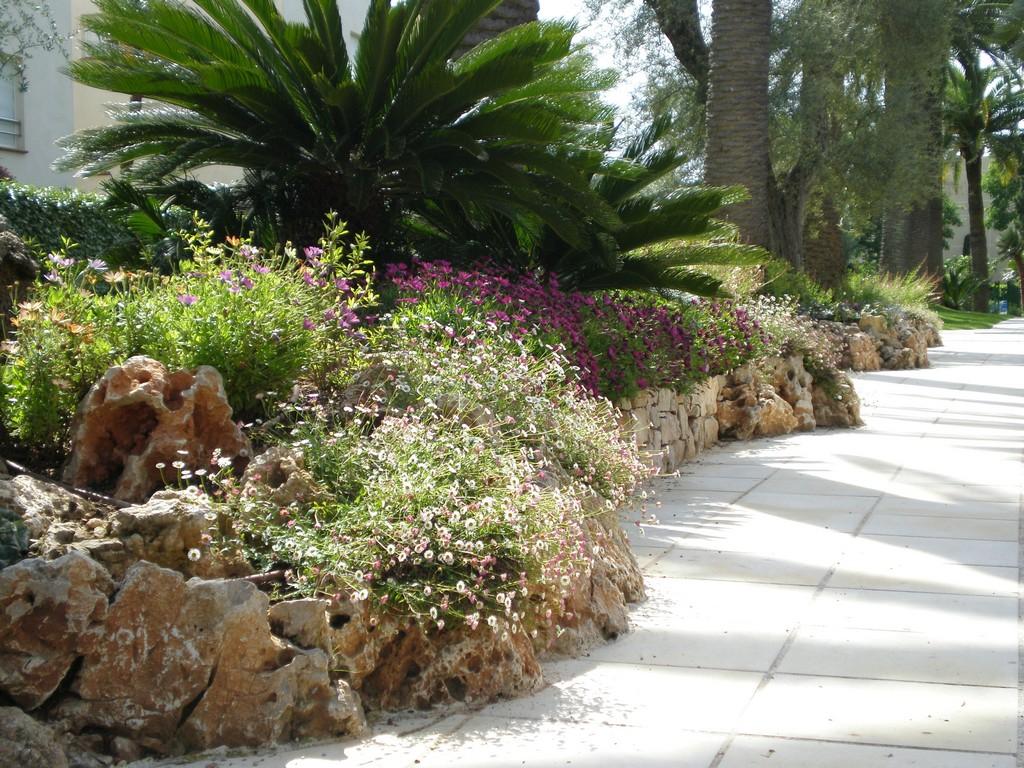 Jardin mediterraneen la rochelle 27 for Jardin 02