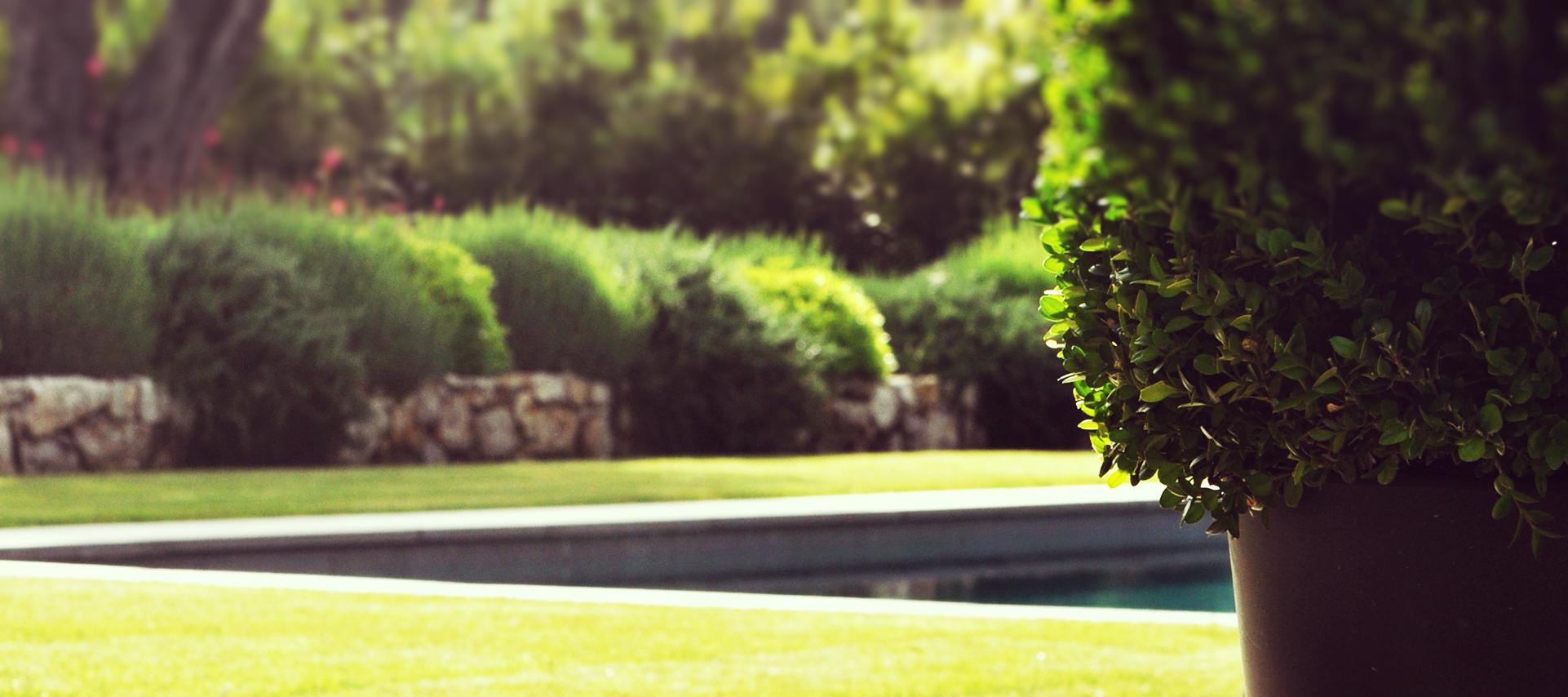 Entretien parcs et jardins adonis paysages for Entreprise parc et jardin