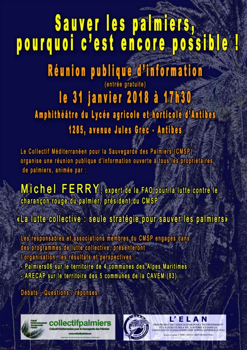 Réunion publique d'information «Sauver les palmiers, pourquoi c'est encore possible !» 31/01/18